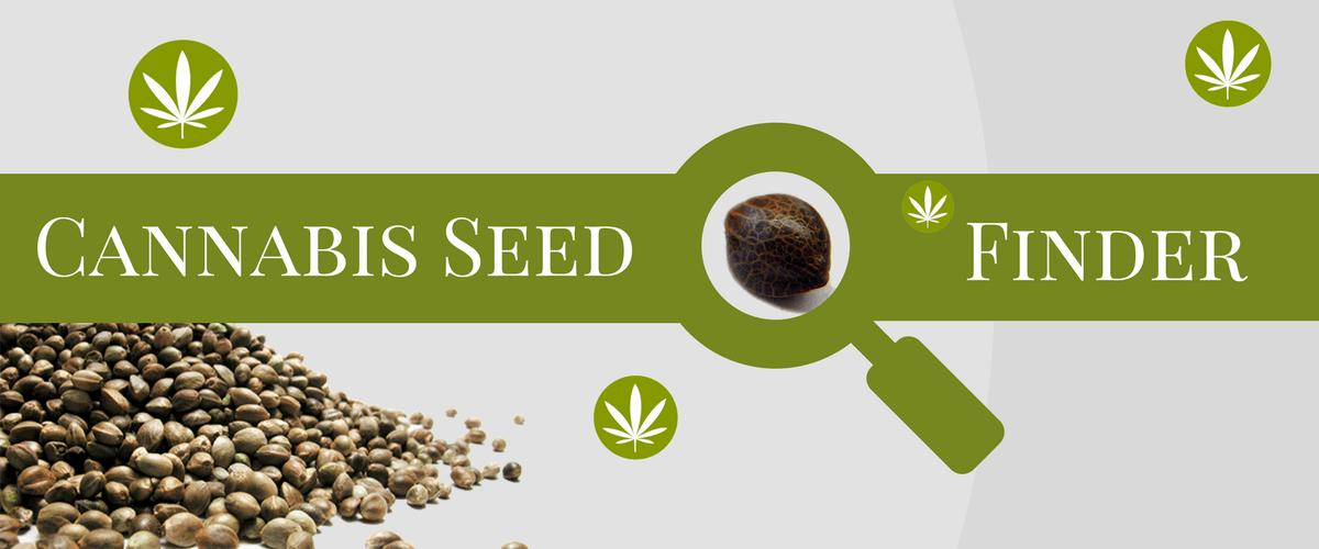 Arkansas Cannabis Seeds Online