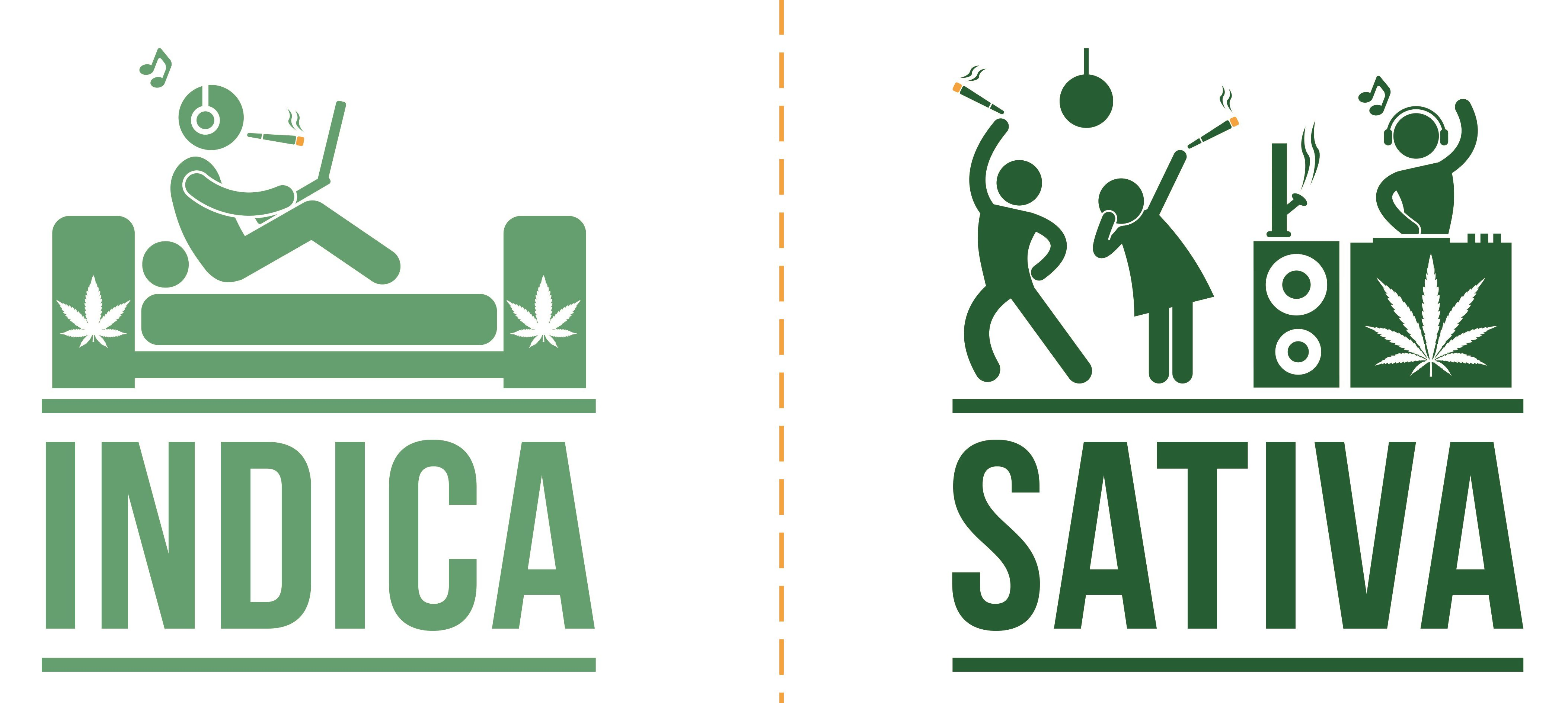 Cannabis Indica Sativa Effect