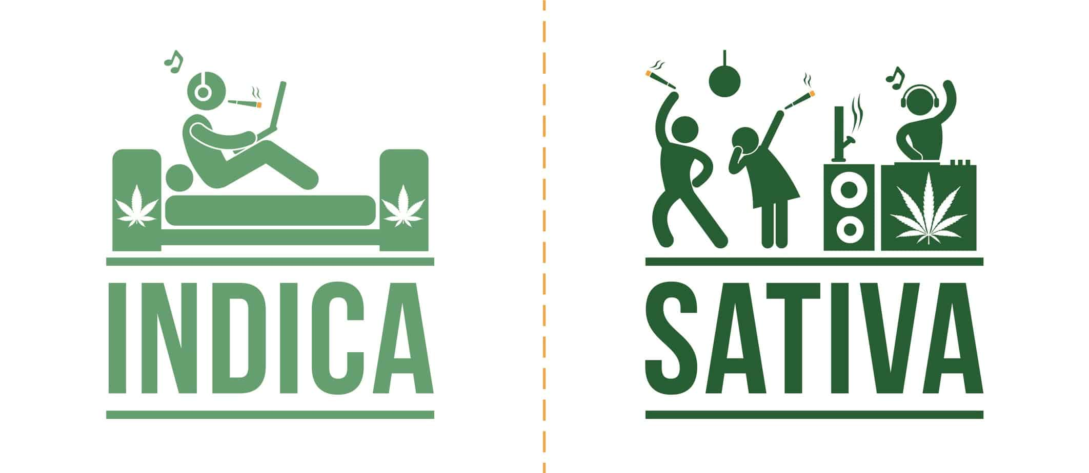 Cannabis Indica & Sativa