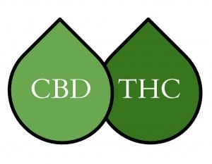 CBD Oil vs THC Oil