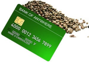 Cannabis Seeds Payment Methods