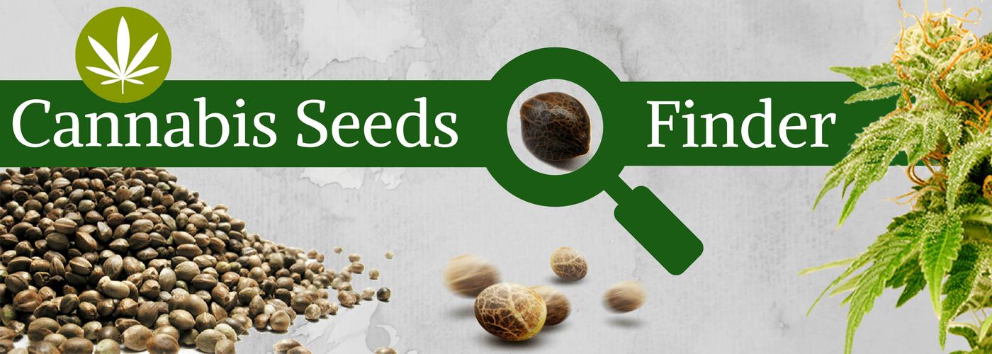 Cannabis Seed Finder