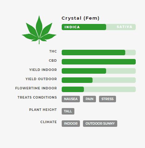 Crystal (fem) Stats