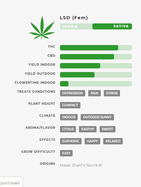LSD (fem) Stats