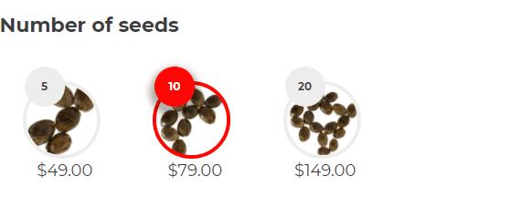 Number of Seeds Blackberry Kush (fem)
