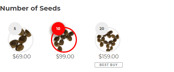 Number of Seeds Blueberry