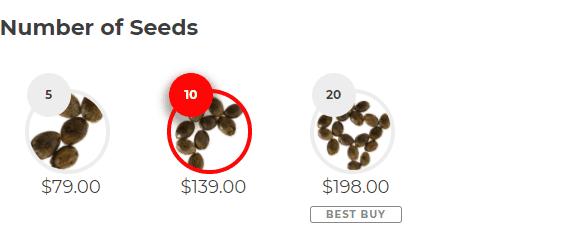 Number of Seeds Green Crack (fem)