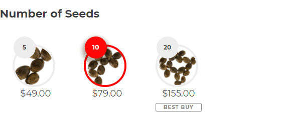 Number of Seeds Pure Indica (fem)