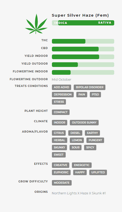Super Silver Haze (fem) Stats