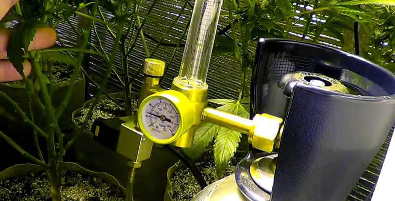 co2 tank cannabis