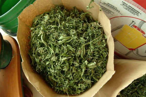 Air-drying your Cannabis Leaves 3