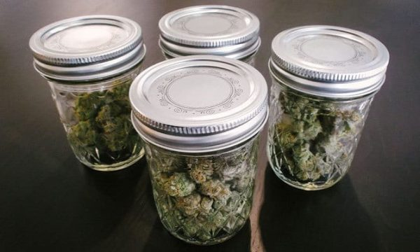 how to store cannabis 6