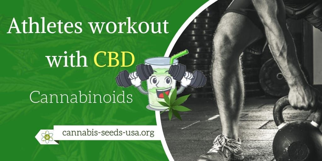 Athletes workout with CBD