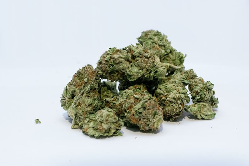 What axes the Shelf-Life of Cannabis?