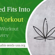 How Weed Fits Into Your Workout and Post-Workout Recovery