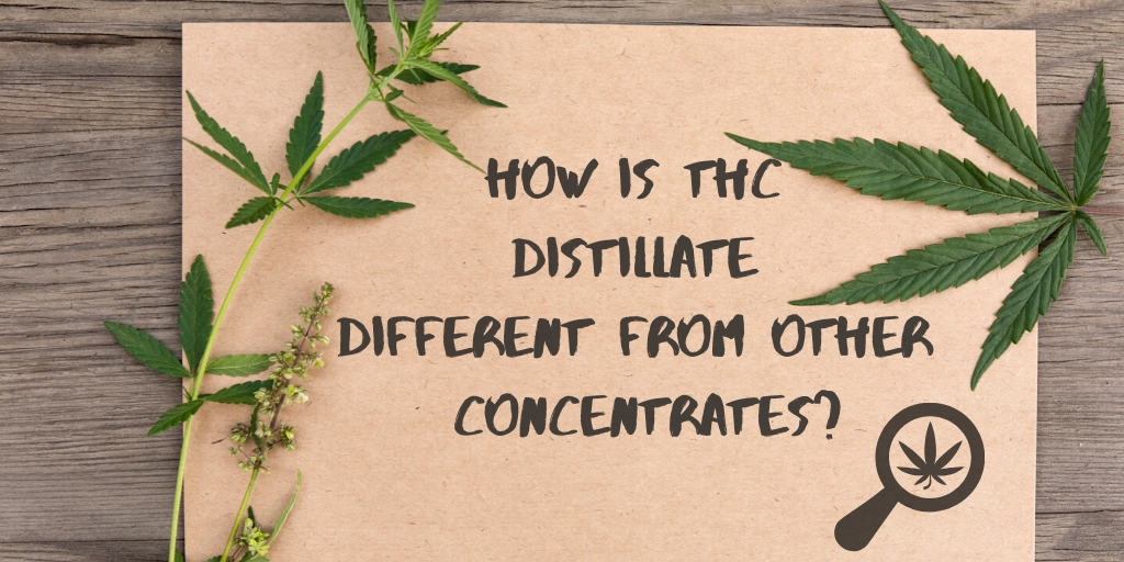 How Is THC Distillate Different from Other Concentrates