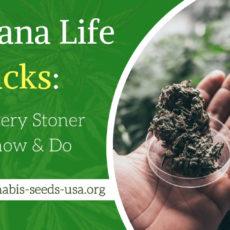 Marijuana Life Hacks: 6 Things Every Stoner Should Know & Do