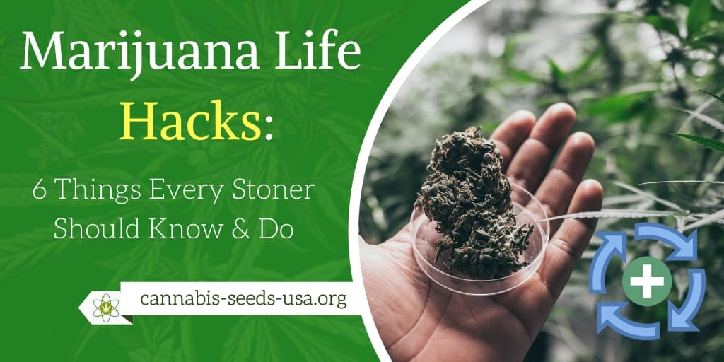 Marijuana Life Hacks 6 Things Every Stoner Should Know & Do