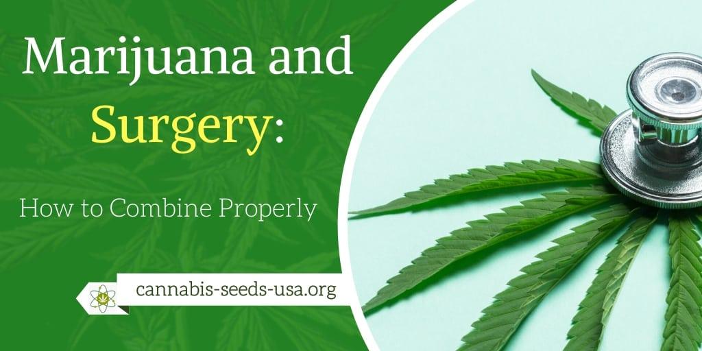marijuana-surgery