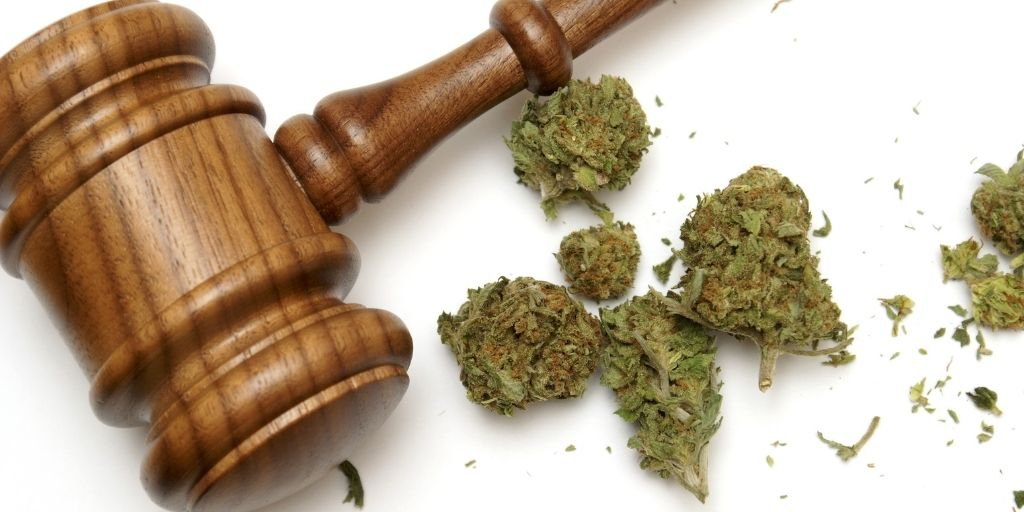 Breaking Cannabis laws in California