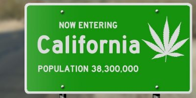 The Laws to Grow and Use Cannabis in California