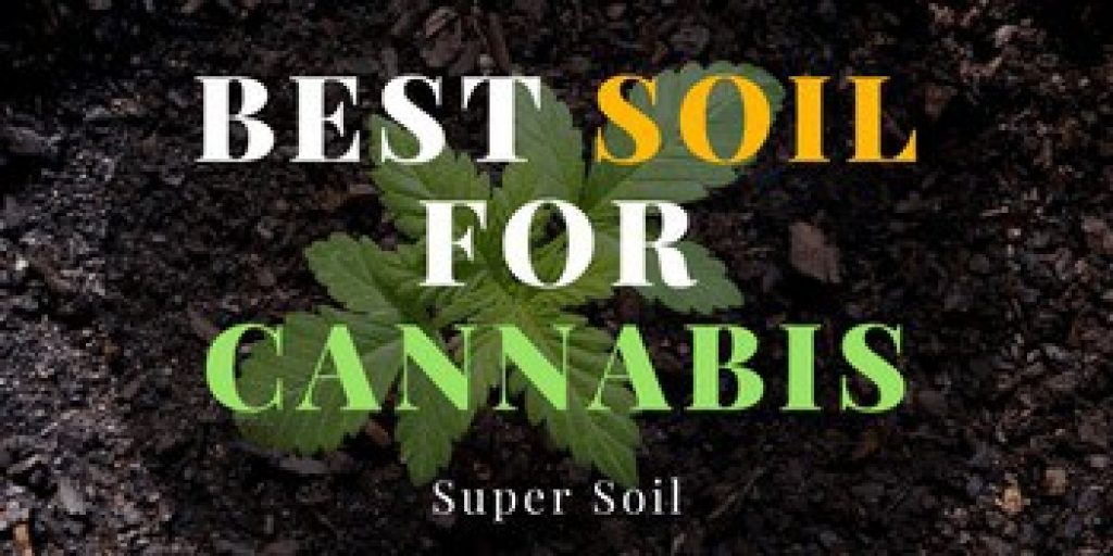 best soil for cannabis
