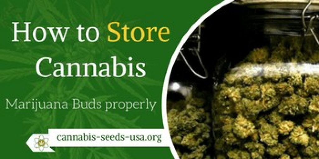 How to Store Cannabis