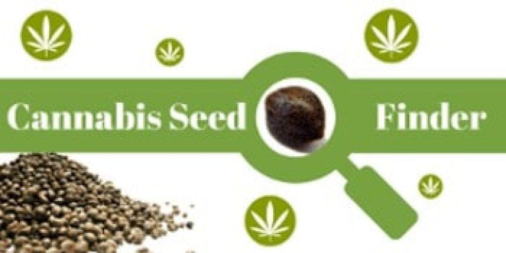 cannabis seeds finder
